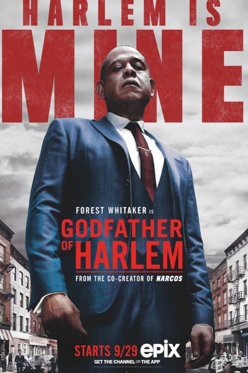 Godfather of Harlem - s01e01